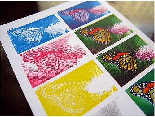 چاپ چند رنگ و تک رنگ چیست؟